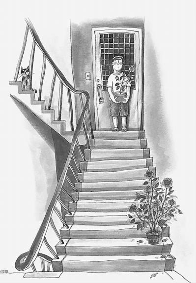 楼梯试花架子图片大全
